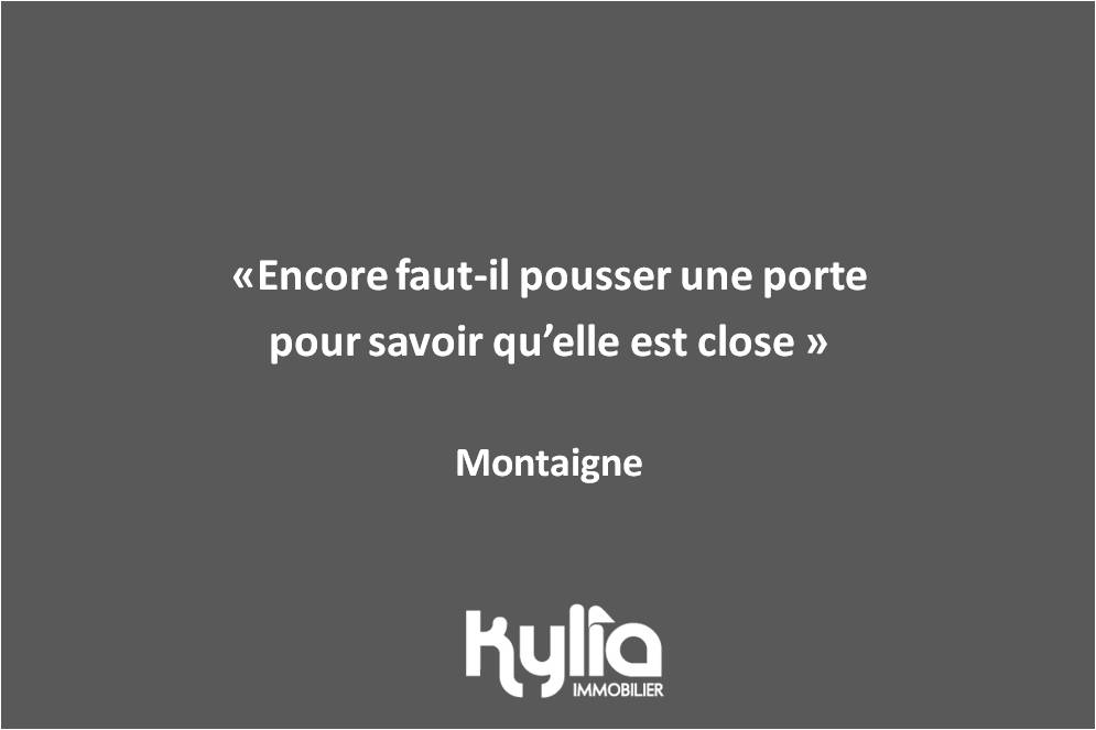 Citation 81- Montaigne