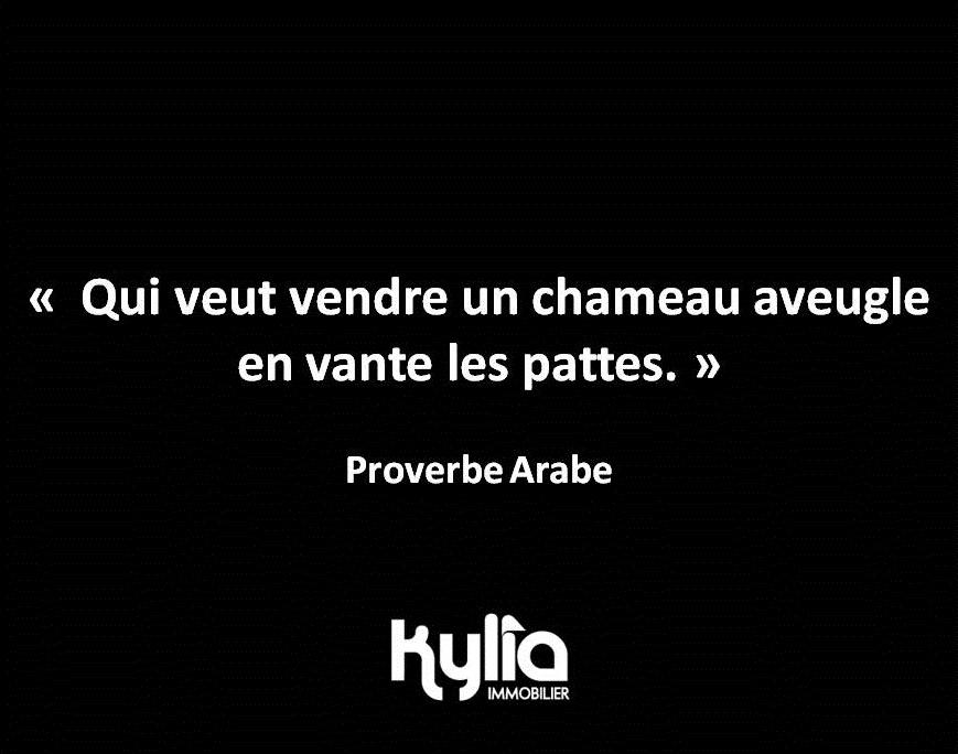 citation-44-proverbe-arabe-ok