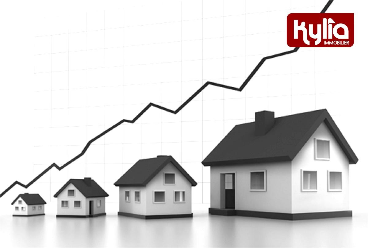 Immobilier instrument politique-nb