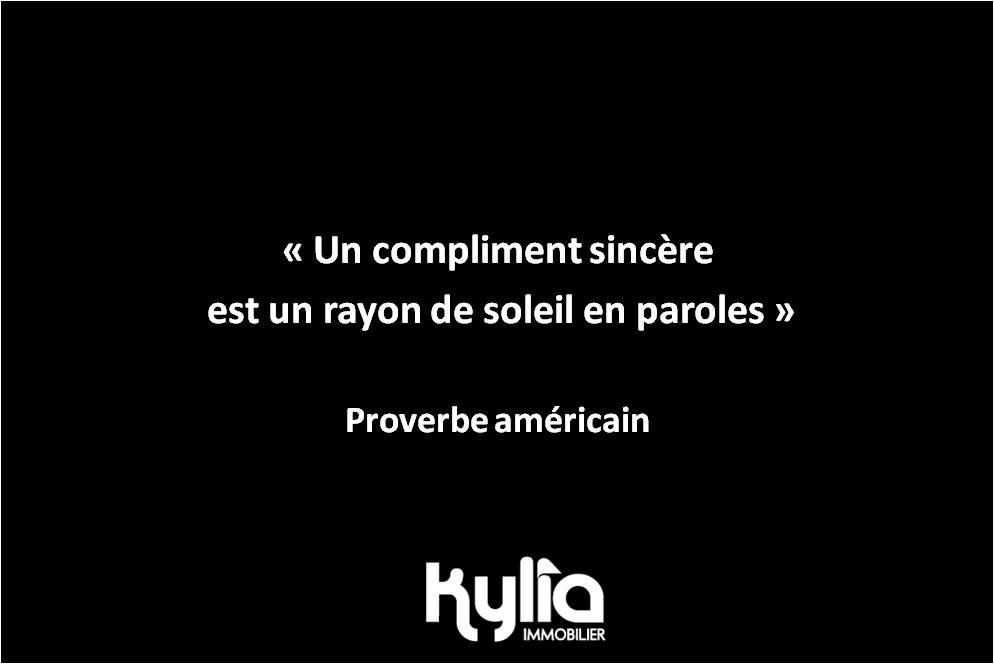 Citation 76 – Proverbe américain
