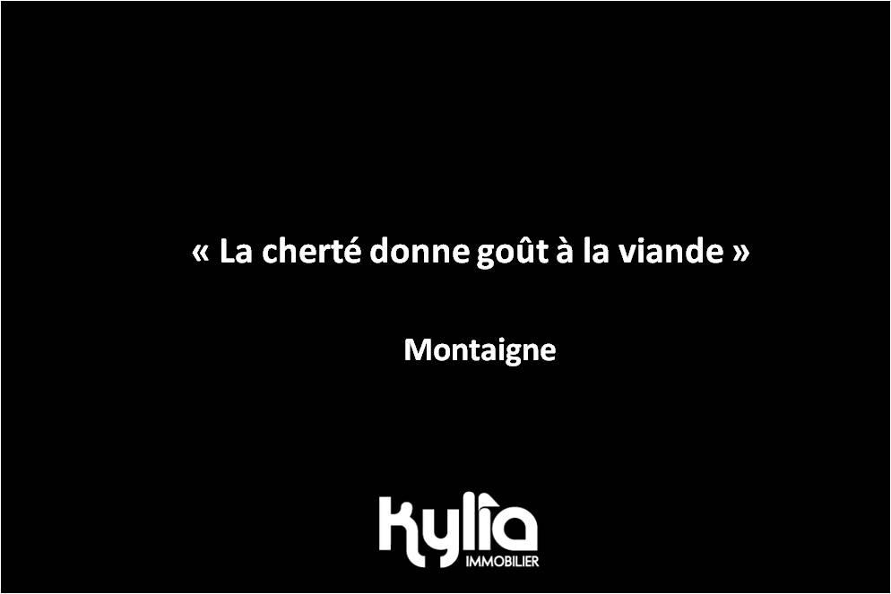 Citation 88 – Montaigne