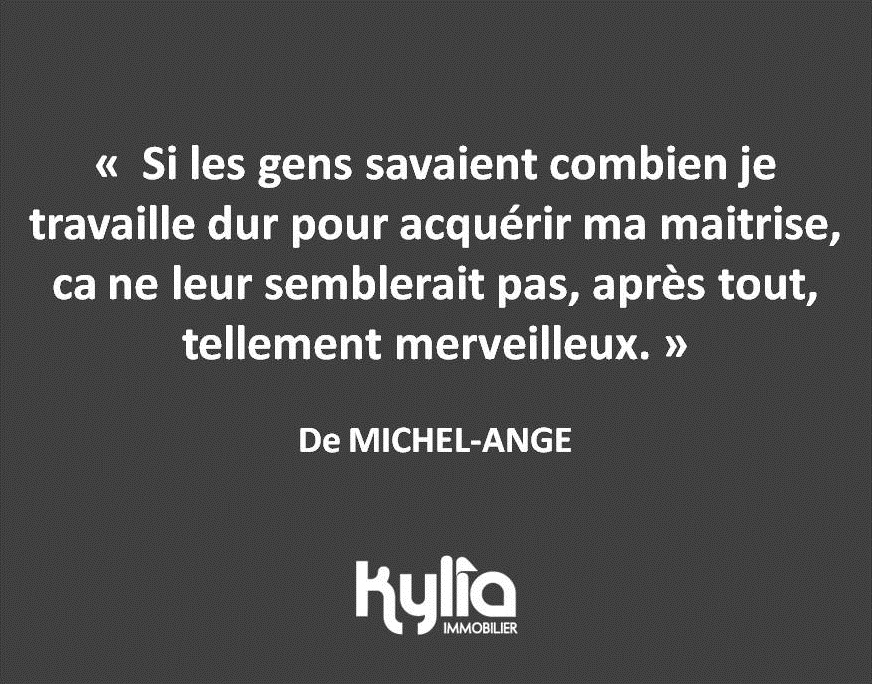 Citation 36 – MICHEL-ANGE